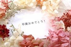 4462795_s.jpg