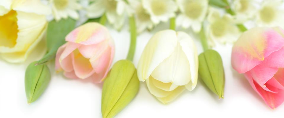 埼玉県川越の婚活カウンセラーブログ